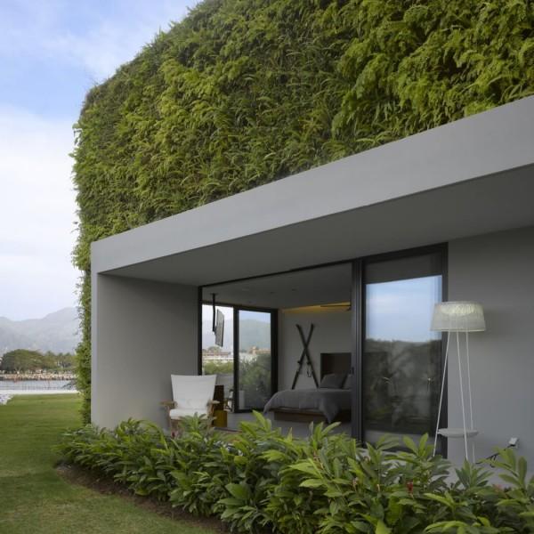 Biệt thự hiện đại với bức tường xanh nhìn ra đại dương 2